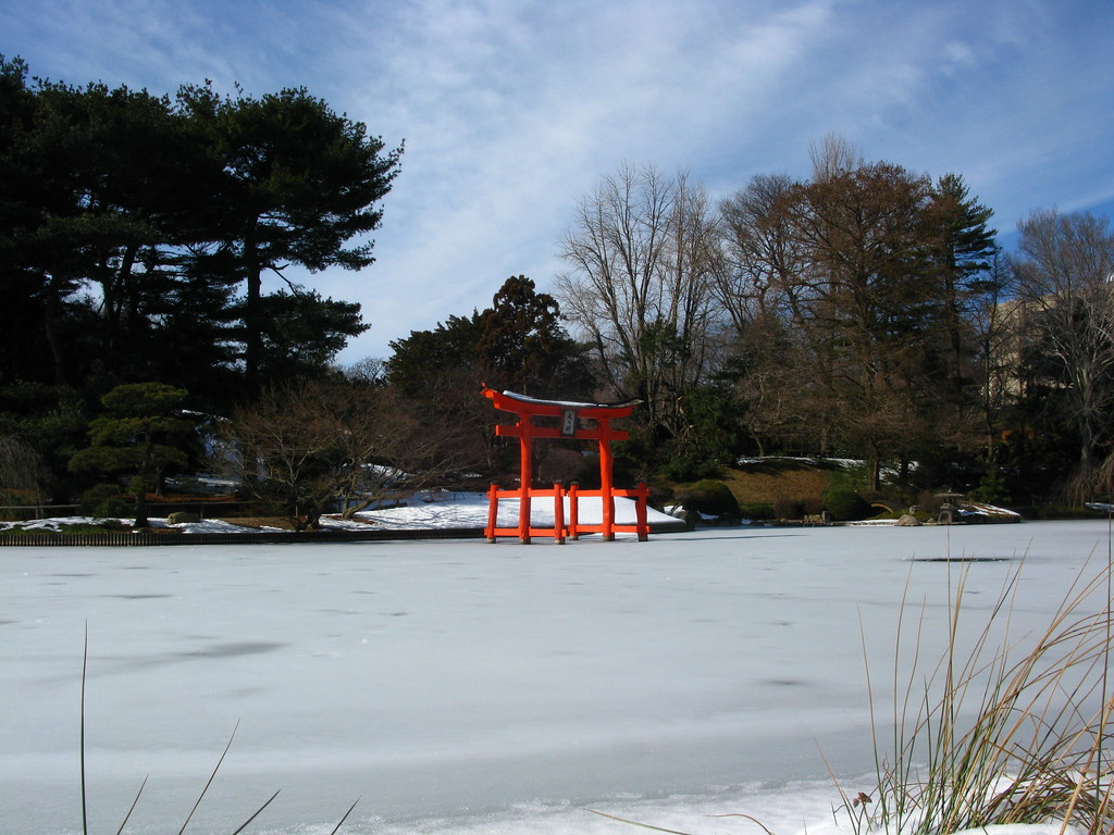 Winter Torii at Bklyn Botanic Garden