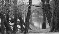 107 (3) (johnjmurphyiii) Tags: park winter usa river connecticut hartford riversidepark connecticutriver 06103 johnjmurphyiii