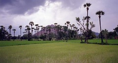 India, Tamil Nadu (mountaintrekker2001) Tags: india clouds rural agriculture fortress ricepaddy tamilnadu