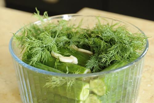 рецепт малосольных огурцов пошаговый с фото