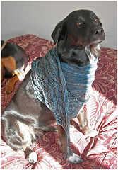 Molly Models Ravelympics Shawl