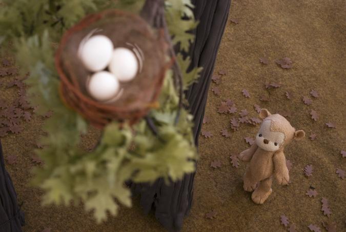 Q18_DSC_0077_alt_eggs
