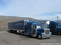 Western Distributing Peterbilt 389, Truck 507 (Michael Cereghino (Avsfan118)) Tags: truck transportation western pete trailer reefer peterbilt refrigerated 389 dist distributing wdtc