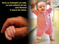 Psalmi 037-024 (Palosi Marton) Tags: kids childrens copii crestine versete biblice