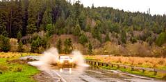 Driving through flooded road (kmanohar) Tags: california northerncalifornia worldheritagesite humboldtcounty highway101 redwoodnationalpark us101 ushighway101 northerncaliforniacoast temperaterainforest prairiecreekstatepark prairiecreek redwoodpark prairiecreekredwoods redwoodcoast humboldtcountyca humboldtcountycalifornia prairiecreekredwoodsstatepark floodedroad redwoodsstatepark pacificrainforest klamathcalifornia prairiecreekpark californiaroads internationalbiospherereserve redwoodpreserve drivingthroughwater davisonroad californiarainforest northwestrainforest drivingthroughfloodedroad humboldtcountyroads humboldtcountyfloods floodedcaliforniaroad floodednortherncaliforniaroad redwoodreserve