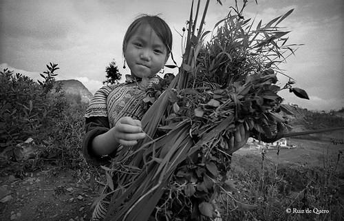 Niña Hmong floreada