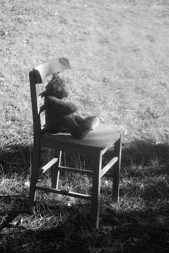 Teddy Bear Chair