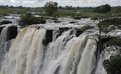 cascate victoria africa. (vincenzovacca) Tags: africa botswana cascate potofgold zambesi 5photosaday cascatevictoria