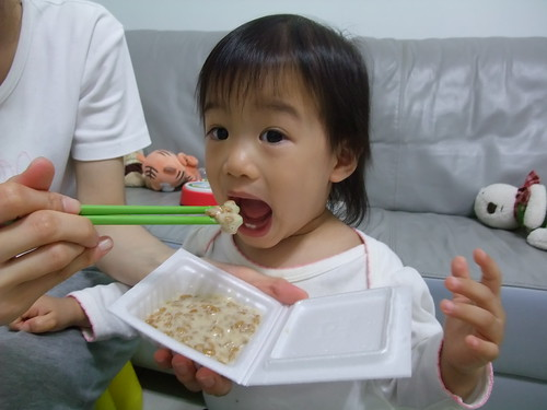 [1Y4M21D] 吃納豆