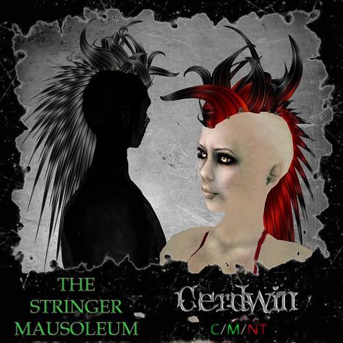 Cerdwin
