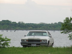 old caddy by the lake