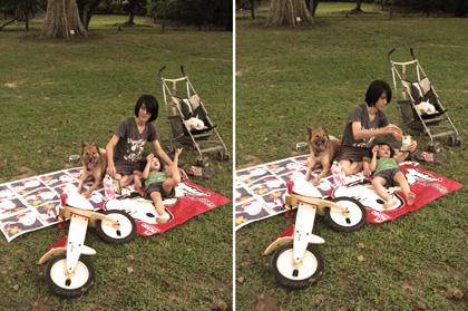 sunday picnic