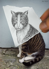 Pencil Vs Camera - 6 (Ben Heine) Tags: street new portrait 6 cute art strange face look animal wall cat hair paper buzz fur weird sketch eyes chat poem hand time body finger homeless dessin yeux odd doigt madness freak half series conceptual dimension bestfriend rue papier confusion poil flickrblog bizarre opticalillusion kot feature regard 4eyes miseenabyme number6 miseenabme petersquinn benheine theunforgettablepictures drawingvsphotography 2dvs3d traditionalvsdigital pencilvscamera miseenabysme imaginationvsreality