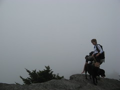 Summit fogged in