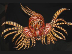 Lion Fish. James Kuhn. Art in Motion. (hawhawjames) Tags: ocean life sea fish art face painting james video marine funny paint artist mask puppet fierce contemporary performance lion makeup lionfish kuhn poisonous vid
