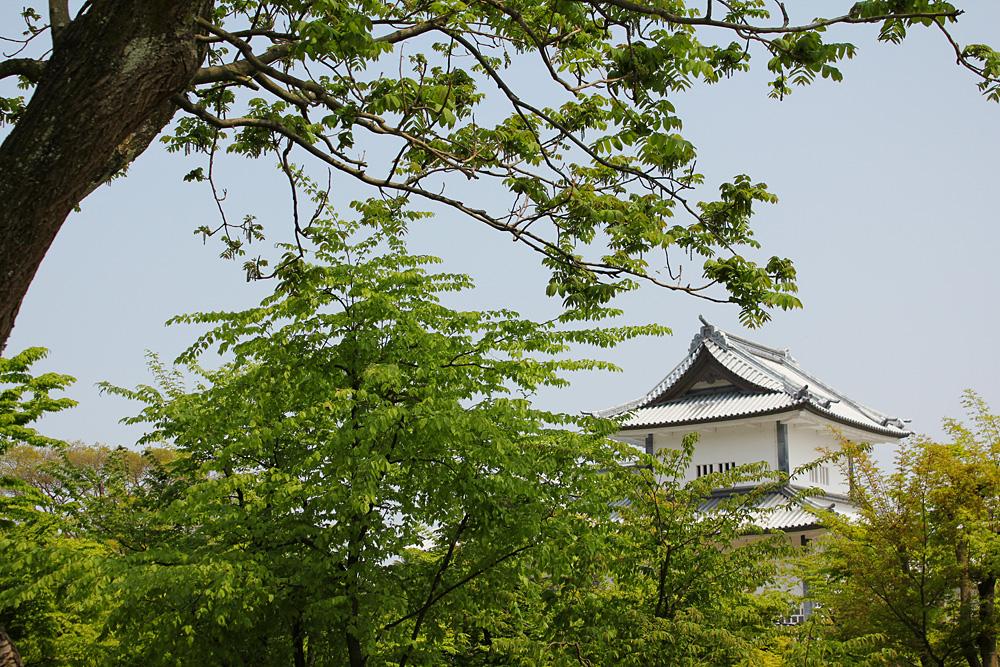 金沢城チラ