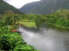 Waipio Valley (Mike Dole) Tags: hawaii bigisland waipiovalley