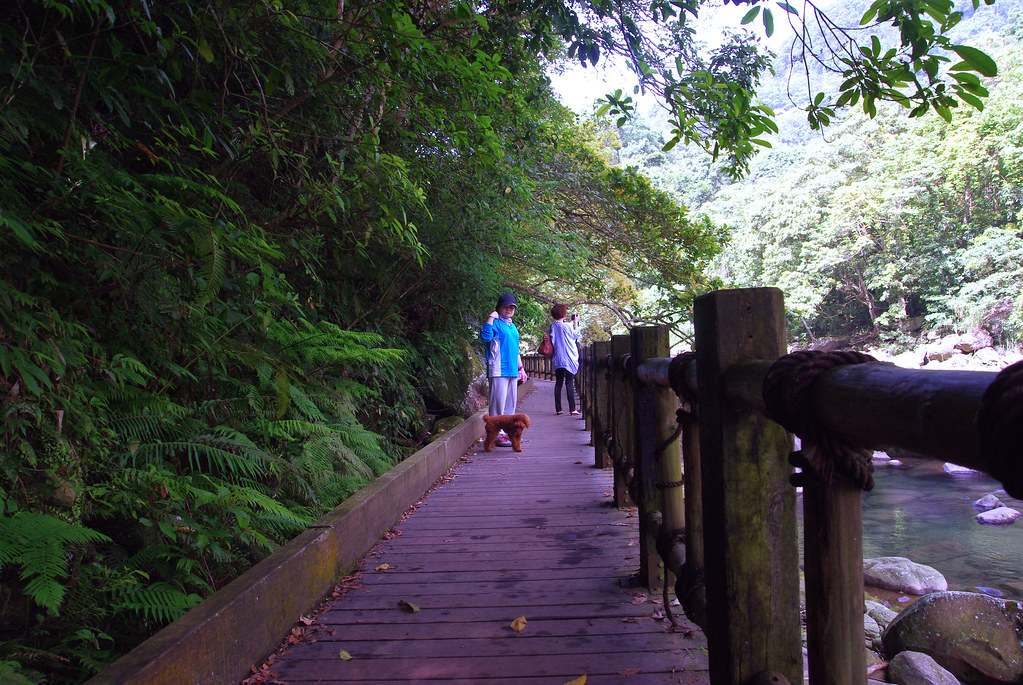 南庄蓬萊溪步道