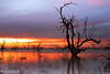 Sunset at Menindee Lakes, Outback NSW, Australia (-yury-) Tags: sunset sky tree water clouds landscape lakes australia nsw outback darlingriver menindee supershot pamamaroo brokoenhill
