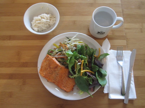 Salmon, veggie medley, salad, rice pudding from the bsitro - $6