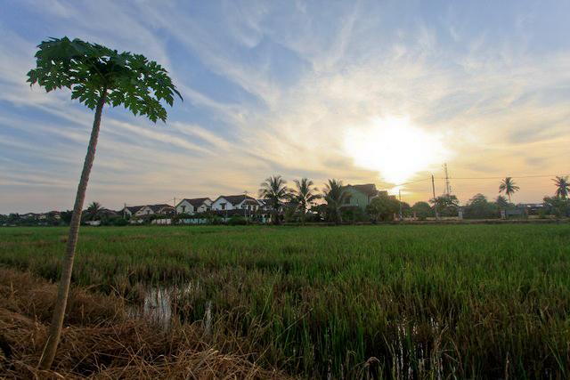 Morning.Alor Setar.Kedah.Malaysia