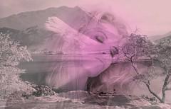 Y el otoo dorma entre huellas de nieve... (conejo721*) Tags: argentina lago mujer amor nieve cerro rostro palabras mardelplata huellas arboleda poesa poema conejo721