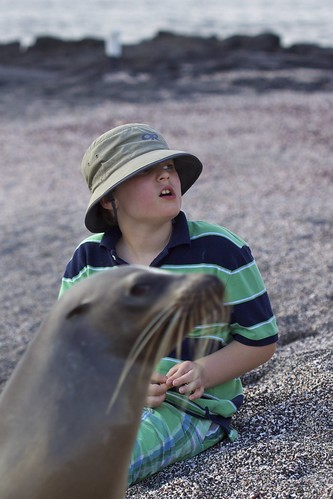 Roger Photobombed By Galápagos Sea Lion (Zalophus wollebaeki)