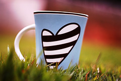 If my heart was a mug (f. prestes) Tags: blue cute verde green colors grass azul 50mm dof heart stripes mug f18 valentinesday caneca listras listrado diadosnamorados coraao