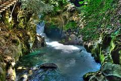 Banias, Israel (Mark Lukoyanichev) Tags: nature israel nikon hdr banias hellmaker