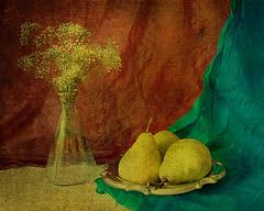 3 pears in june (sandra djurbuzovic) Tags: blue red stilllife 3 flower green art june yellow vintage photo poetry poem pears stilleven pear vase montenegro drapery naturamorta vaza budva crnagora crveno zuto zeleno cvijece plavo formyman crnjanski kruske infinestyle mrtvapriroda magicunicornverybest selectbestexcellence sbfmasterpiece sandradjurbuzovic draperija