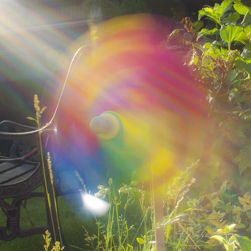 478:1000 Pinwheel in the garden