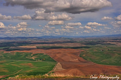 Palouse (Coop Photography) Tags: brown green clouds photography washington nikon butte fluffy hills april wa 17 coop hdr 2010 palouse steptoe d90