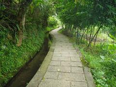坪頂古圳步道