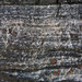Rock365 : 20 11 2010 : Blastomylonitic Psammitic Gneiss