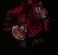 ann boleyn, benjamin britten & heidi klum (hanna.bi) Tags: pink roses dark heidiklum terrace hydrangea bouquet oleander spirea benjaminbritten davidaustin hannabi annboleyn