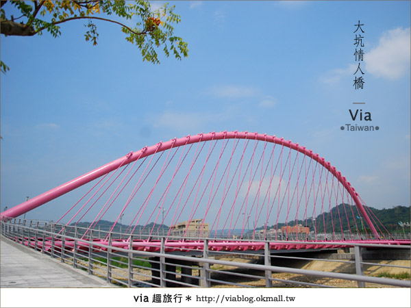 【大坑情人橋】新的台中約會景點~浪漫粉紅色情人橋22