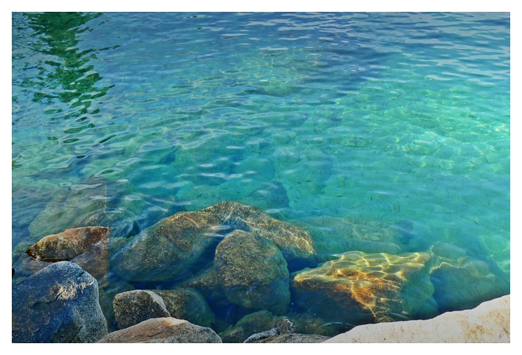 Jessica Jacob Photography - :Lake Tahoe's Ridiculously Clear Water
