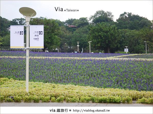 【花博一日遊】via遊花博(上)~從圓山園區開始玩花博!33