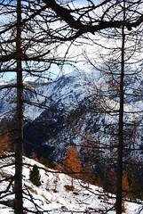 Incorniciato - Framed. (sinetempore) Tags: trees sky mountain snow fog alberi clouds montagne landscape nuvole nuvola cielo neve nebbia montagna paesaggio foschia champorcher lagomuffè