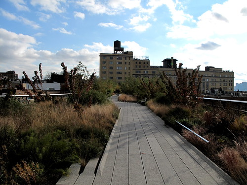 The Standard Hotel & High Line