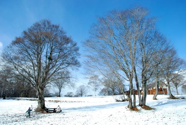 début hiver