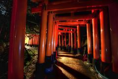 Red Gates at Midnight (Stuck in Customs) Tags: japan kyoto night red gates garden midnight hdr hdrtutorial hdrphotography treyratcliff stuckincustoms stuckincustomscom