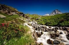 A day in the Alps (Riccardo Maria Mantero) Tags: alps mantero riccardo maria italy landscape outdoors sky travel water riccardomantero riccardomariamantero