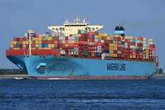 Maersk Edinburgh DST_1184 (larry_antwerp) Tags: maerskedinburgh maersk container rilland netherlands nederland zeeland schip ship vessel 船 船舶 אונייה जलयान 선박 کشتی سفينة schelde 斯海尔德河 スヘルデ川 스헬더 강 رود شلده سخيلده