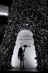 touch ! (monochrome version) (Noisy Paradise) Tags: christmas xmas city urban bw monochrome japan night tokyo shinjuku sigma dp  foveon sigmadp2 noisyparadise