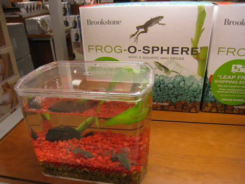 Frog O Sphere Brookstone Frog-o-Sphere