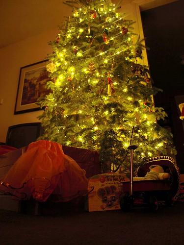 Christmas09 004
