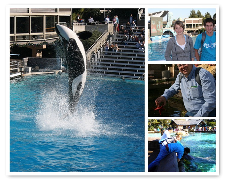 Sea World 2009