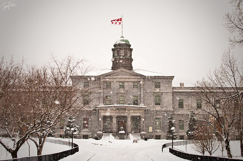 McGill University in Winter