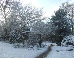 SNOW - YORK - 2010